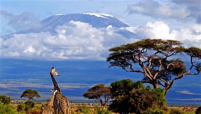 Велотур у подножия Килиманджаро, ночь в деревне Масаи. Танзания