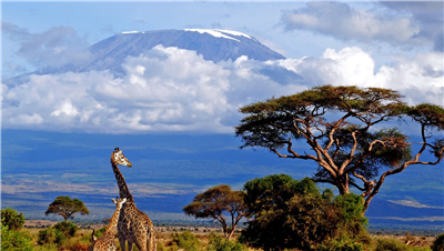 Велотур вокруг Килиманджаро. Танзания